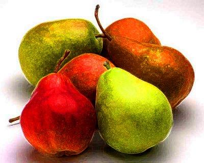 Panna cotta accompagnement recette du coulis de poires - Peut on congeler des poires ...